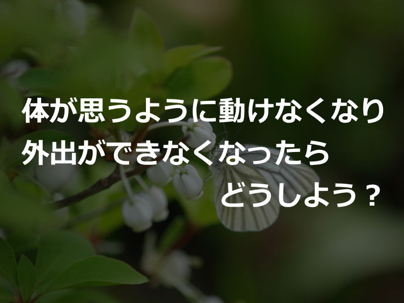 gaisyutu814-610